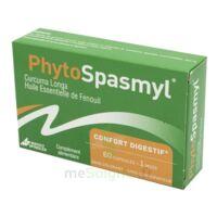 Phytospasmyl Caps B/60 à Hagetmau