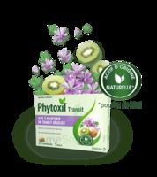 Phytoxil Transit Comprimés B/20 à Hagetmau