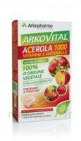 Arkovital Acérola 1000 Comprimés à Croquer B/30 à Hagetmau