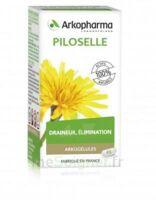 Arkogélules Piloselle Gélules Fl/45 à Hagetmau