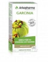 Arkogélules Garcinia Gélules Fl/45 à Hagetmau