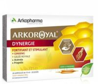 Arkoroyal Dynergie Ginseng Gelée Royale Propolis Solution Buvable 20 Ampoules/10ml à Hagetmau