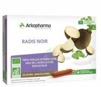 Arkofluide Bio Ultraextract Radis Noir Solution Buvable 20 Ampoules/10ml à Hagetmau