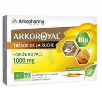 Arkoroyal Gelée Royale Bio 1000 Mg Solution Buvable 20 Ampoules/10ml à Hagetmau