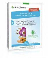 Arkogélules Complex Gélules Flexibilité & Mobilité Articulaire B/40 à Hagetmau