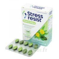 Stress Resist Comprimés Stress & Fatigue B/30 à Hagetmau