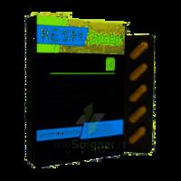 Synactifs Respigreen Bio Gélules B/10 à Hagetmau
