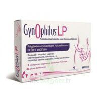 Gynophilus Lp Comprimés Vaginaux B/6 à Hagetmau