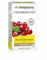Arkogélules Cranberryne Gélules Fl/45 à Hagetmau