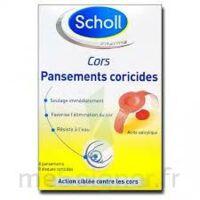Scholl Pansements Coricides Cors à Hagetmau