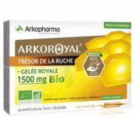 Arkoroyal Gelée Royale Bio 1500 Mg Solution Buvable 20 Ampoules/10ml à Hagetmau