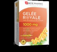 Forte Pharma Gelée Royale 1000 Mg Solution Buvable 20 Ampoules/10ml à Hagetmau