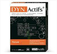 Synactifs Dynactifs Gélules B/30 à Hagetmau