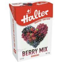 Halter Sans Sucre Bonbon Fruits Rouges 40g à Hagetmau