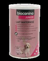 Biocanina Lait Poudre Maternisé B/400g à Hagetmau