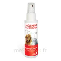 Clément Thékan Caniderma Solution Externe Cicatrisant Spray/125ml à Hagetmau