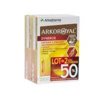 Arkoroyal Dynergie Ginseng Gelée Royale Propolis Solution Buvable 2b/20 Ampoules/10ml à Hagetmau
