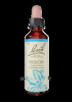 Fleurs De Bach® Original Beech - 20 Ml à Hagetmau