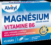 Govital Magnésium Vitamine B6 Comprimés B/45 à Hagetmau