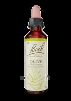 Fleurs De Bach® Original Olive - 20 Ml à Hagetmau