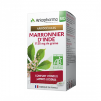 Arkogélules Marronnier D'inde Bio Gélules Fl/45 à Hagetmau